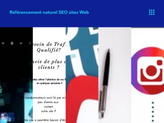 Referencement de sites web et Marketing Digital. PLM Consulting