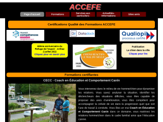Educateurs et comportementalistes canin félin formation ACCEFE