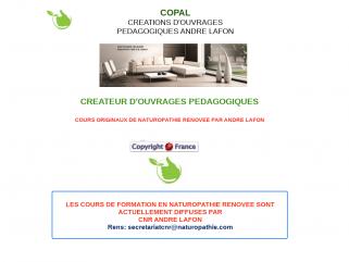 Formation des naturopathes par E-learning