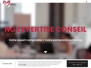 NG EXPERTISE & CONSEIL