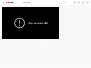 Video de biographie du Pr Laurent LANTIERI